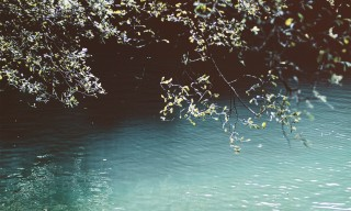 Tranquil water